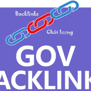 dich vu backlink gov